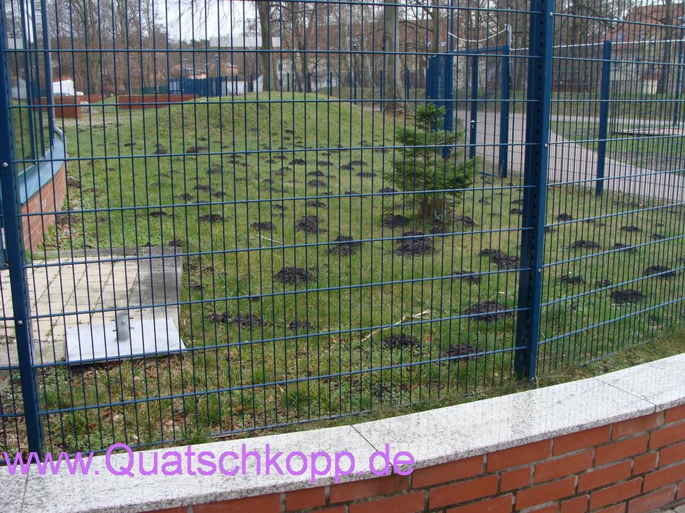 2014 Graal Müritz Ostsee Sturm Quatschkopp 10