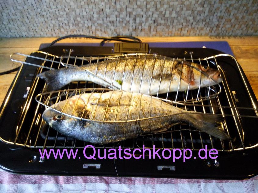 Quatschkopp Karfreitag Fisch Grill Wolfsbarsch Dorade Forelle 2015 2