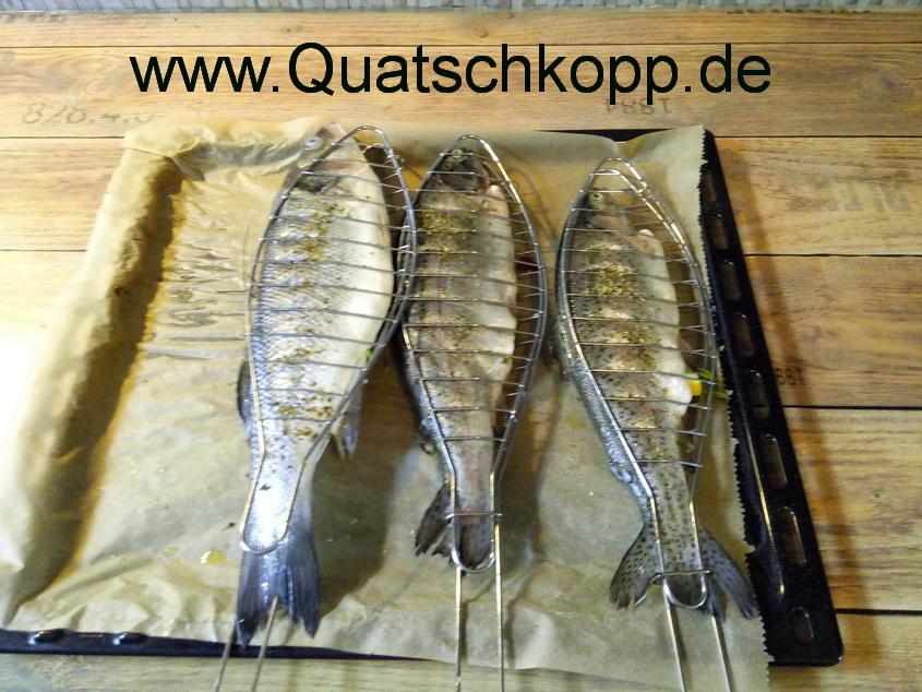 Quatschkopp Karfreitag Fisch Grill Wolfsbarsch Dorade Forelle 2015 3